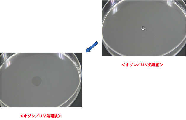 純チタンの親水化処理