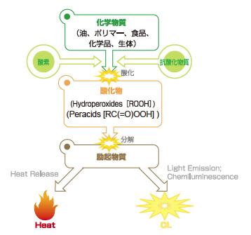 酸化反応由来発光現象
