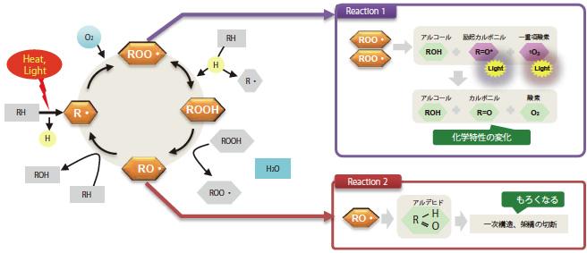 自動酸化機構と発光現象